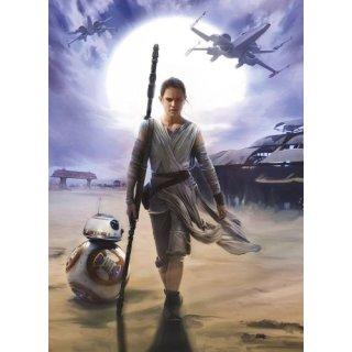 Star Wars Episode VII Fototapete Rey 254 x 184 cm