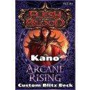 Flesh & Blood: Arcane Rising - Custom Blitz Deck (46...