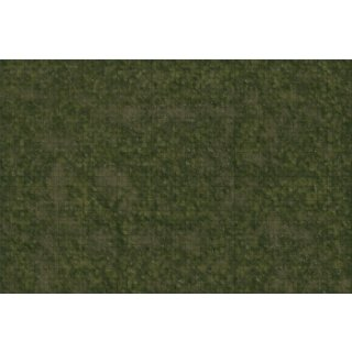 D&D: Icons of the Realms - Grasslands Battle Mat